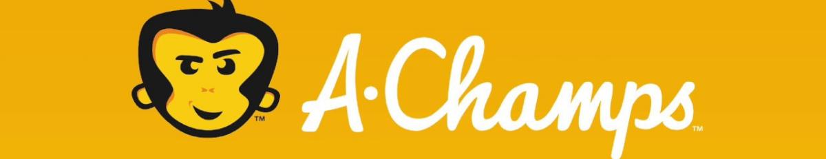 A. Champs interaktywne kostki ROXs